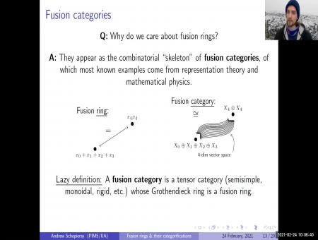 Fusion rings and their categorifications